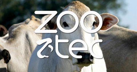 Zootec terá oficina de cortes nobres Senepol e workshop sobre carnes de qualidade
