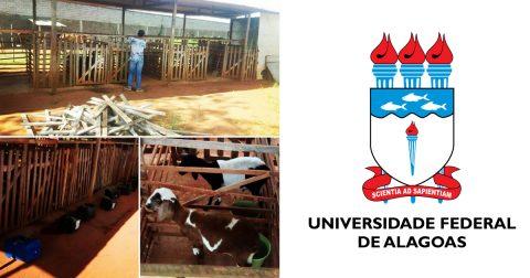 Grupo de pesquisa de zootecnia da UFAL se destaca na produção de artigos