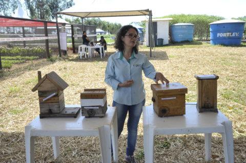 Zootecnista evidencia importância da criação de abelhas sem ferrão