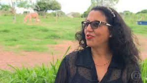 Fantástico entrevista zootecnista sobre maus tratos à jumentos