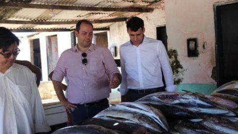Zootecnista é Secretário de Agricultura, Pecuária, Pesca e Aquicultura em Alagoas