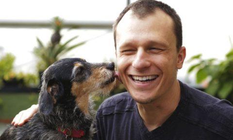 Zootecnista especialista em comportamento animal dá dicas de transporte para pets